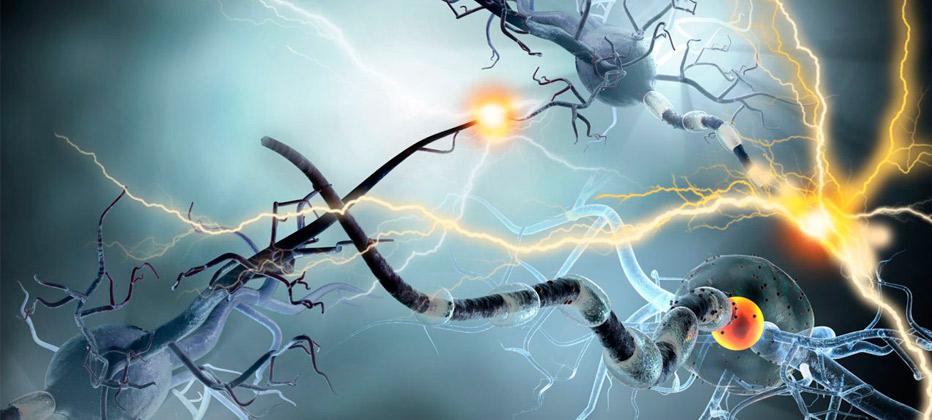 sintomas de la esclerosis multiple