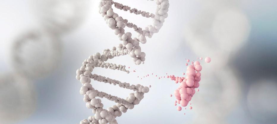 que cromosoma afecta la enfermedad de huntigton