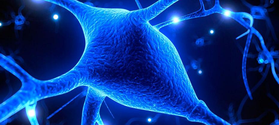 avances esclerosis multiple